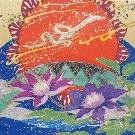 shangrila dreams hikarinomichi